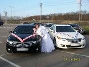 Свадебный кортеж в Туле