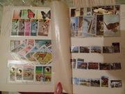 продаю почтовые марки
