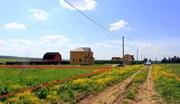 Продаю участок 12 соток для ПМЖ в деревне Шеверняево,  круглогодичный п