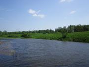 Продаю земельный участок 20 соток ПМЖ в деревне Шеверняево