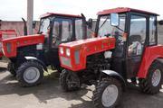 Тракторы МТЗ (Беларус),  весь модельный ряд от официального дилера.